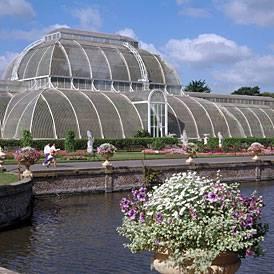 kew royal botanic gardens palmhouse