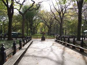 Photo of New York Central Park