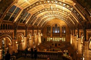 The main hall of the London Natural History Museum
