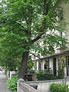 Notting Hill, London Pict
