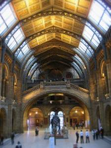 London Museum of Natural History Dinosaur hall