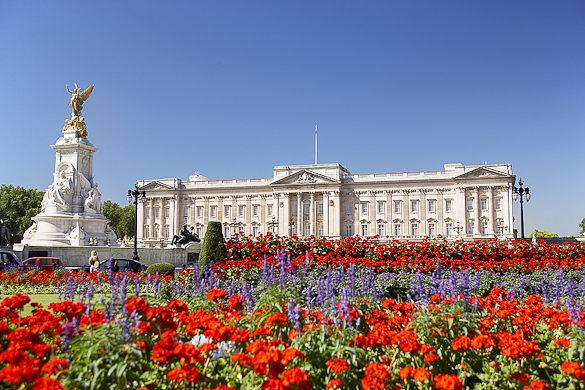 Picture of a flower garden with London's Buckingham Palace in the background