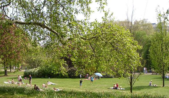 Image of a Royal Park in London