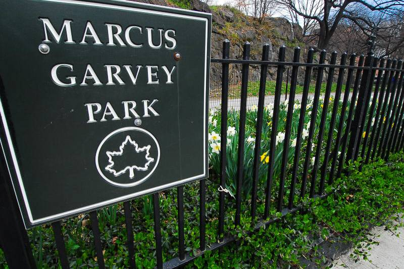 Image of Marcus Garvey Park