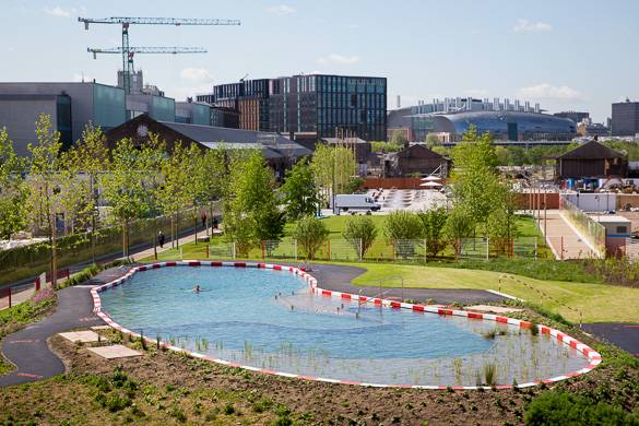 Image of the King's Cross Pond Club from above, with trees surrounding the pond