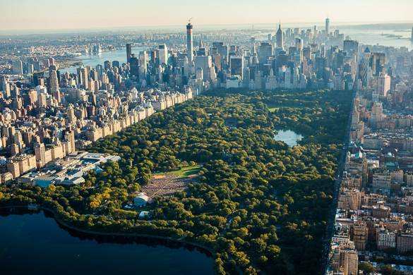 Arial image of Central Park with lake and skyline of apartment buildings