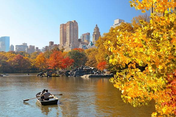Image of people boating on a lake in Central Park with buildings and trees with fall colors in the background