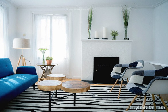 image of the living room in NY-16869, with a zebra striped carpet