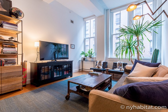 Image of living room of NY-17156 in DUMBO Brooklyn