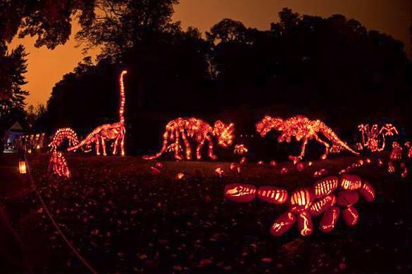 Image of dinosaurs made of illuminated Jack O' Lanterns