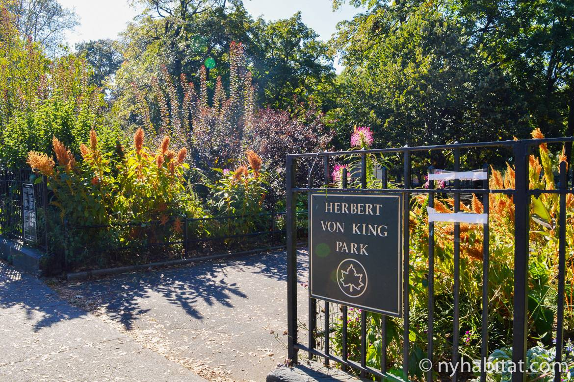 Image of plants at the entrance of Herbert Von King Park in Bed-Stuy, Brooklyn