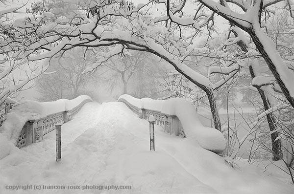 Bow Bridge Central Park New York