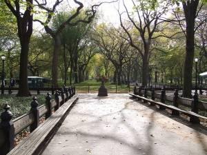 Foto des New Yorker Central Parks