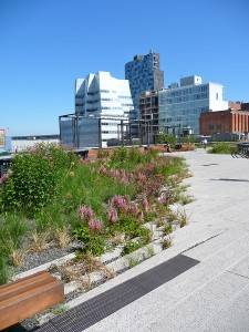 New Yorks High-Line Park