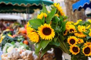 Ein Bauernmarkt mit Sonnenblumen in Aix-en-Provence