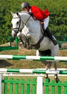 Ein Pferdesportler