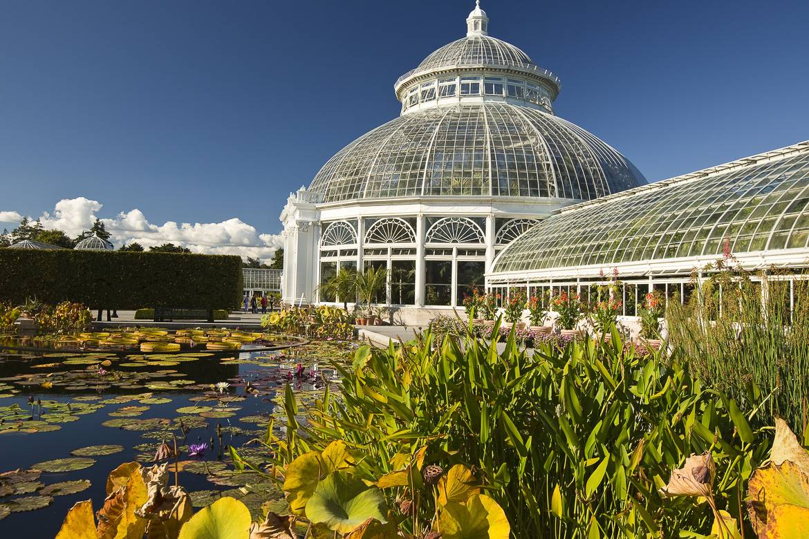 Bild des New York Botanical Garden in der Bronx