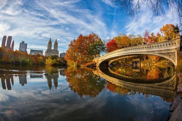 Bild der mit Blättern übersäten Brücke im Central Park.