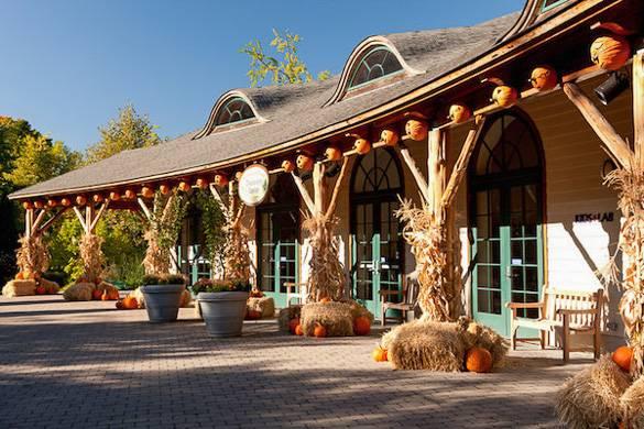 Bild eines Pavilion mit Herbstdekoration aus Heu, Maisstauden und Kürbissen im NY Botanical Garden.