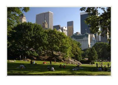 Photo du Cental Park