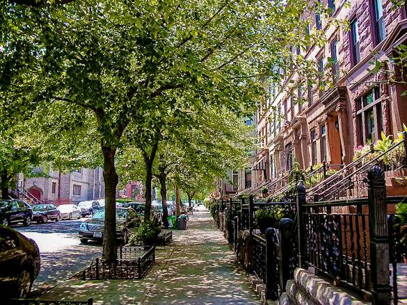 D couvrez le quartier anim de bedford stuyvesant for Case vacanza a new york manhattan