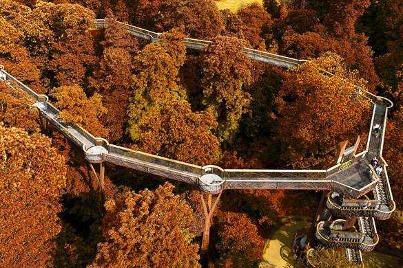 Photo du feuillage d'automne coloré et des passerelles dans les arbres