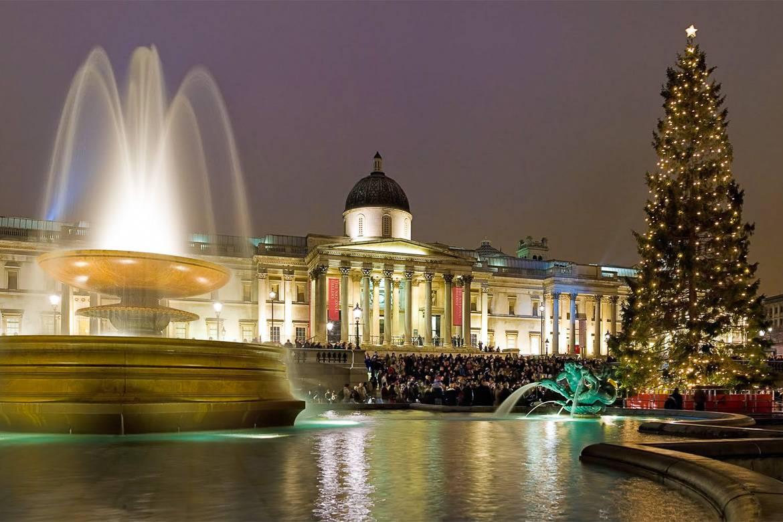 Photo d'un sapin de Noël près d'une fontaine et d'un grand bâtiment.
