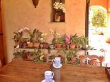 Sud de la France - Côte d'Azur - T4 - Villa appartement bed breakfast - Appartement référence PR-389