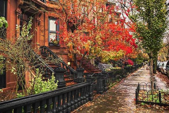 Immagine di una palazzina brownstone che costeggia una strada piena di foglie d'autunno colorate