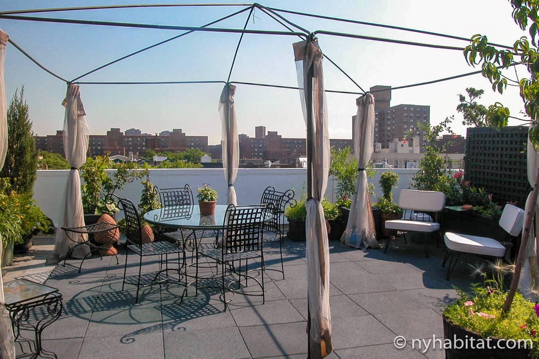 Immagine del terrazzo sul tetto con tavolo, sedie e piante a NY-11476