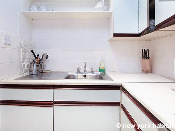 London 1 Bedroom apartment - kitchen (LN-221) photo 2 of 3