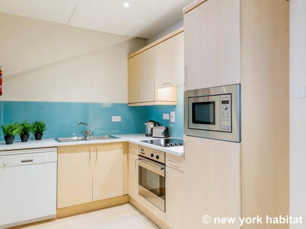 London 1 Bedroom accommodation - kitchen (LN-315) photo 1 of 1