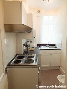 London 1 Bedroom accommodation - kitchen (LN-710) photo 1 of 2