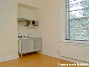London Studio apartment - kitchen (LN-1183) photo 1 of 1