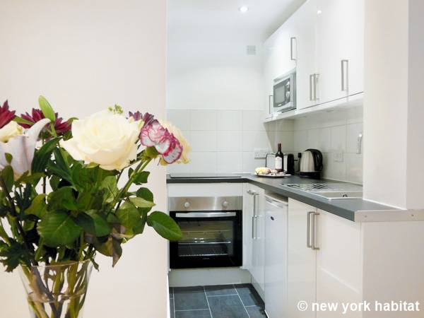 London 1 Bedroom apartment - kitchen (LN-1449) photo 1 of 2