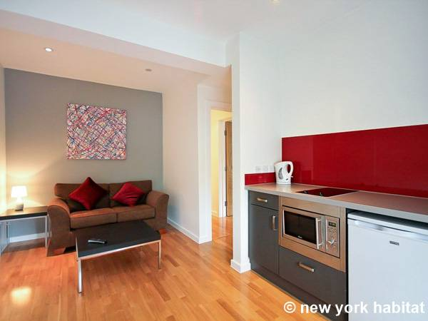 London 1 Bedroom apartment - Apartment reference LN-1504