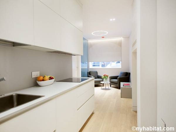 London 1 Bedroom apartment - kitchen (LN-1797) photo 1 of 2