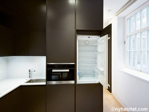 London Studio apartment - kitchen (LN-1798) photo 3 of 4