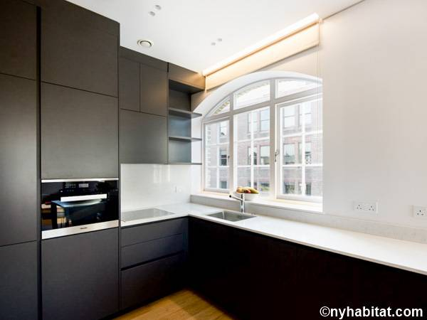 London 1 Bedroom apartment - kitchen (LN-1799) photo 1 of 3