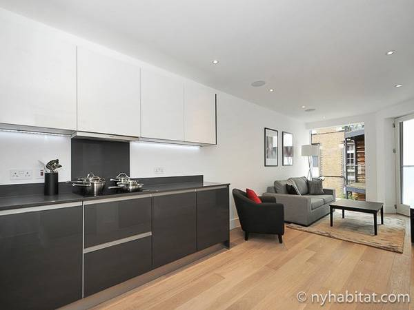 London 1 Bedroom accommodation - kitchen (LN-1865) photo 1 of 2