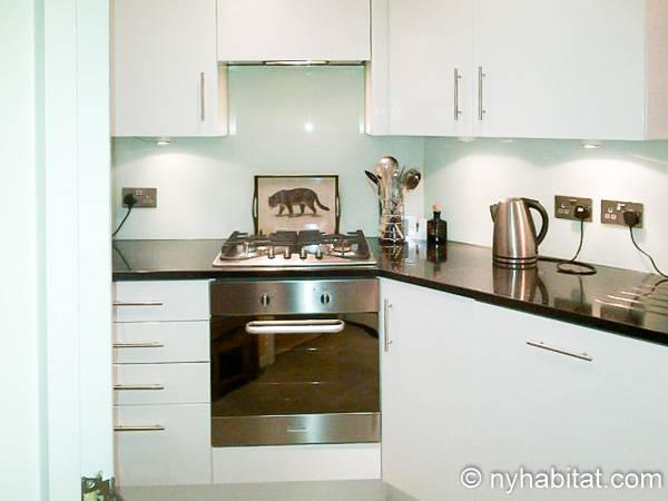 London 1 Bedroom - Duplex apartment - kitchen (LN-1918) photo 1 of 4