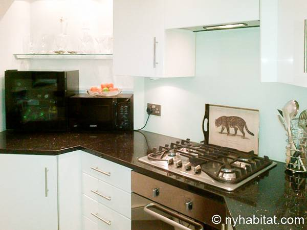 London 1 Bedroom - Duplex apartment - kitchen (LN-1918) photo 2 of 4