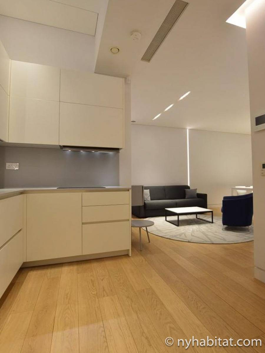London 1 Bedroom apartment - kitchen (LN-1920) photo 2 of 2