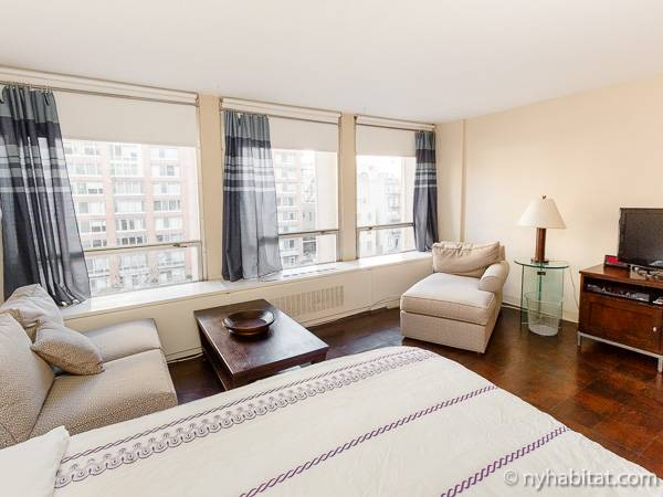 ... New York Studio Apartment   Living Room (NY 819) Photo 4 Of 8 ... Part 77