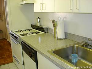 New York 2 Bedroom roommate share apartment - kitchen (NY-10247) photo 2 of 4