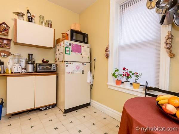 room for rent in astoria queens 1 bedroom apartment ny 11162