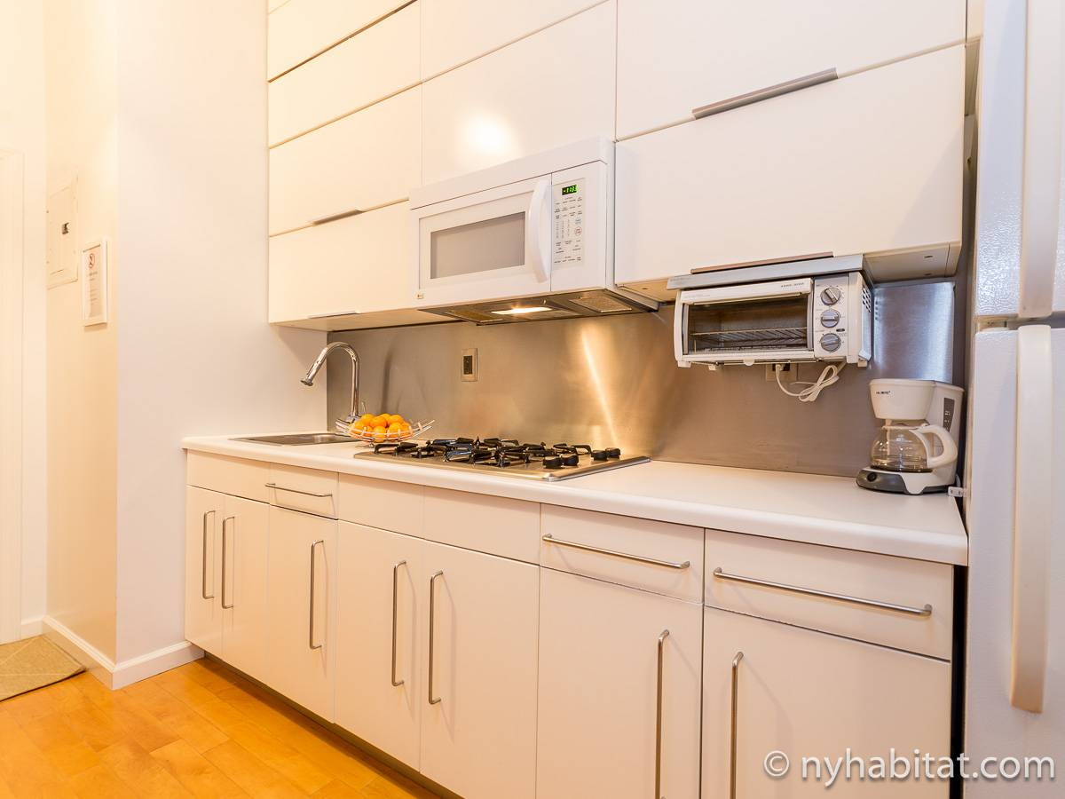 New York T3 appartement bed breakfast - cuisine (NY-11527) photo 2 sur 4