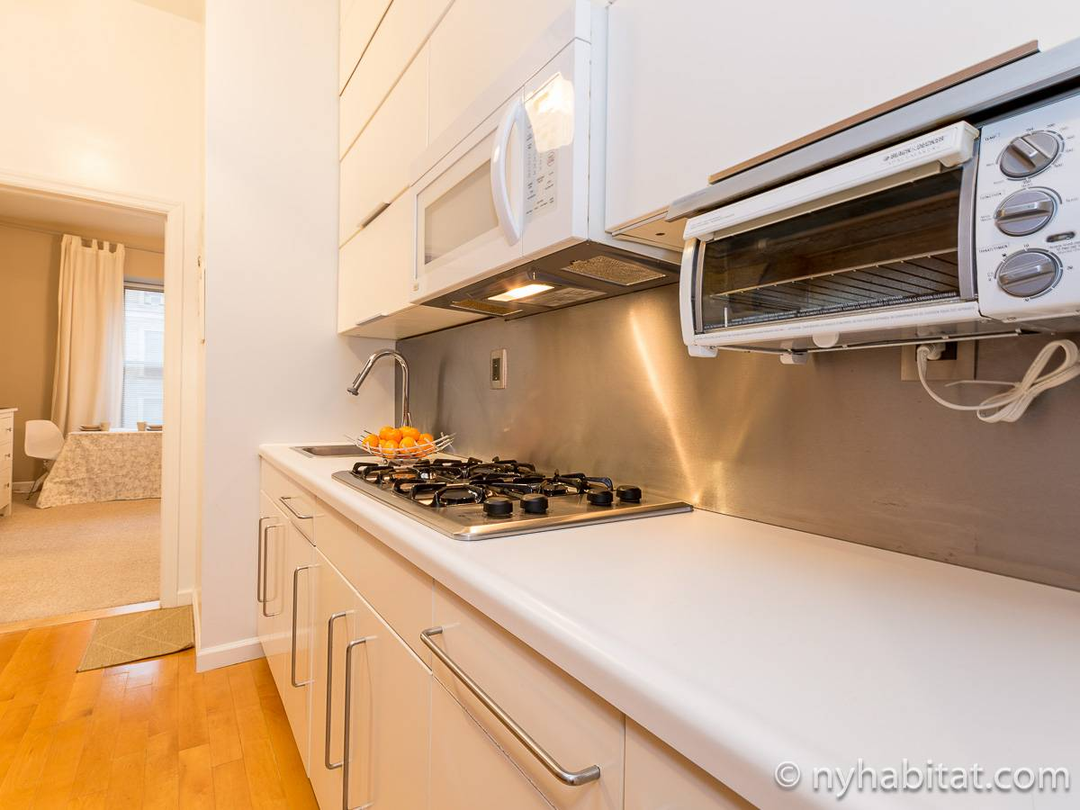New York T3 appartement bed breakfast - cuisine (NY-11527) photo 3 sur 4