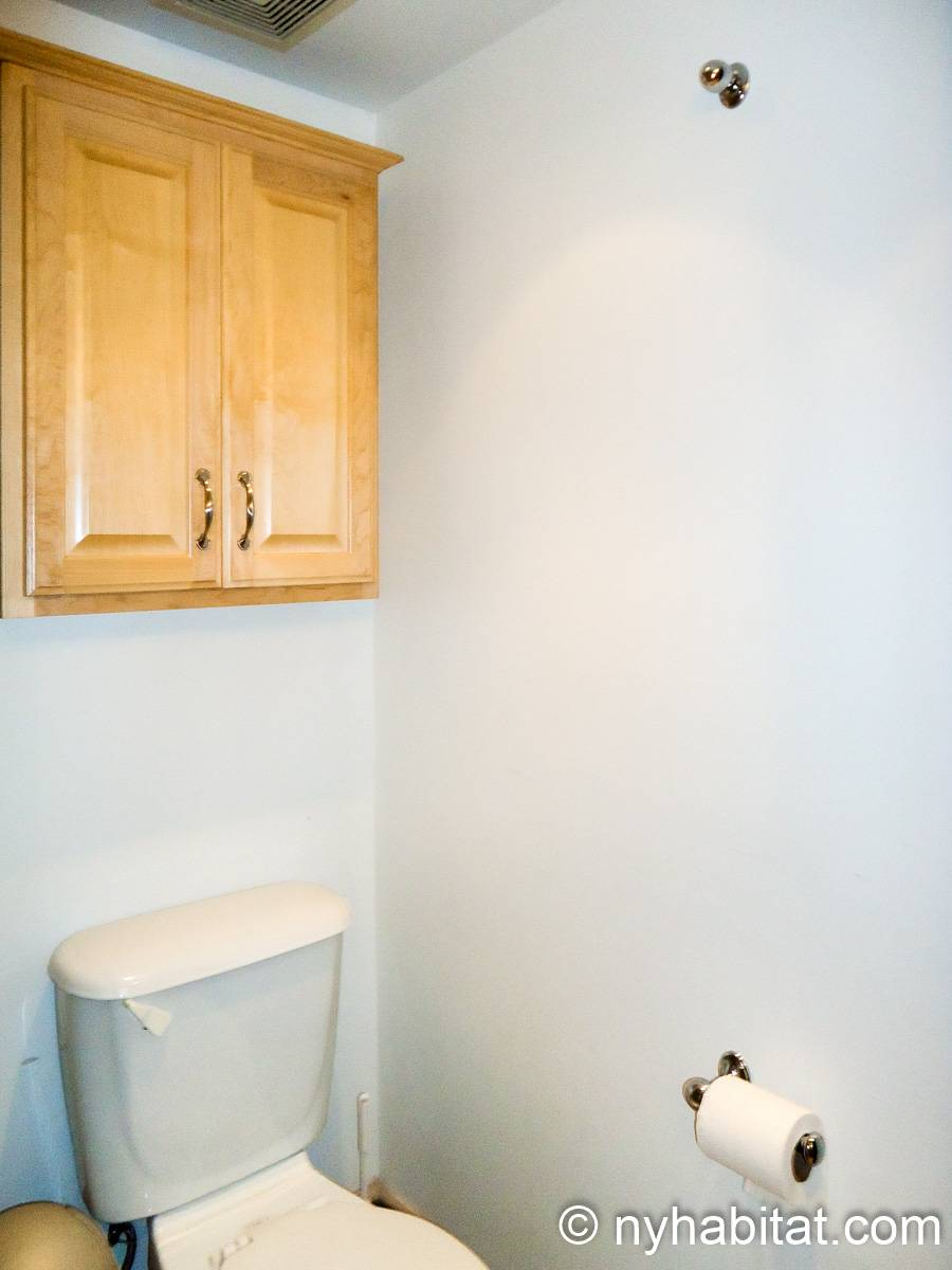 New York Roommate Room For Rent In Harlem 2 Bedroom Duplex Apartment Ny 12033