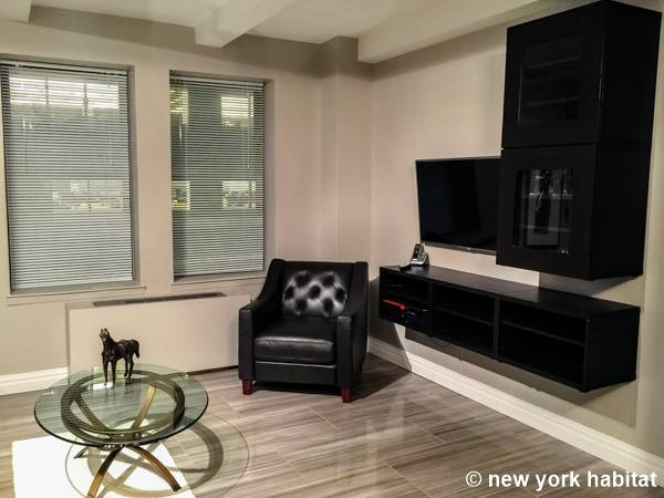 New York 1 Bedroom apartment - living room (NY-12081) photo 2 of 4